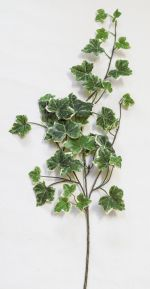 "FG4957K2:  25"" IVY SPRAY VARIEGATED"